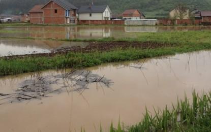 """Shtrati i lumit """"Morava"""" vërshoi mbi 500 hektarë tokë bujqësore"""