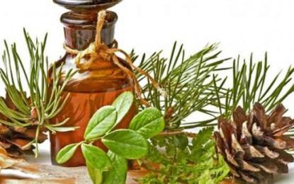 Shurup me hala pishe për imunitet të fortë dhe mushkëri të pastra