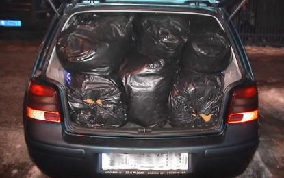 Arrestohen dy persona, nga Bujanoci dhe Beogradi me 396 kilogram duhan /foto/