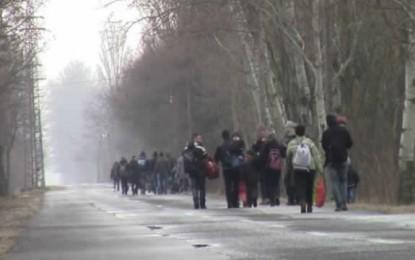 Si e shohin shqiptarët nga Zvicra eksodin e kosovarëve