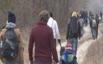 Rrugëtimi nga Serbia në Hungari, trafikantët u tregojnë kosovarëve malet për të kaluar kufirin(video)