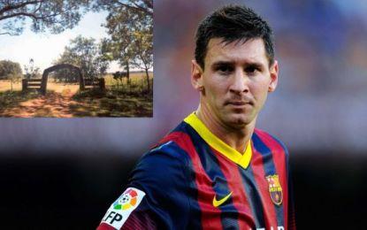 Messi i blen 6,800 hektarë tokë, nuk dihet me çka do t'i mbjell