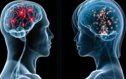 Njohja e dy gjuhëve riforcon trurin dhe e mbron atë nga goditjet