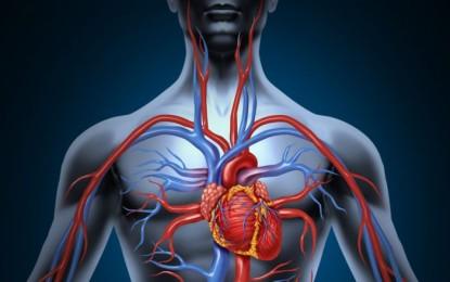 Si ta përmirësoni qarkullimin e gjakut pa ilaçe?
