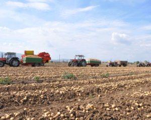 Komuna e Bujanocit shpall konkursin për përkrahje të bujqësisë