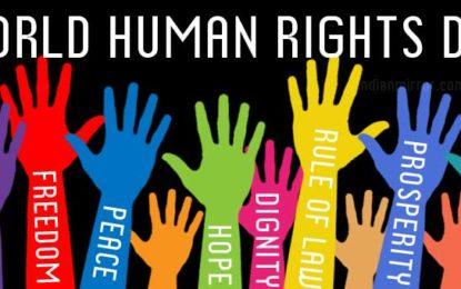 KDNJ: Viti 2017, pa përmirësime thelbësore të gjendjes të të drejtave të njeriut në Luginë