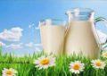 Cili qumësht i bimëve është zëvendësimi më i mirë për qumështin e lopës?